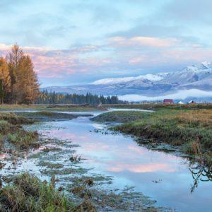altai, river, autumn